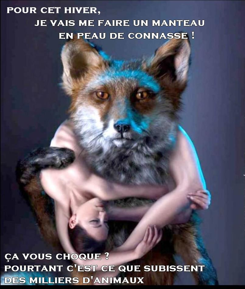 Campagne de la fourrure