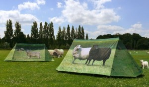 Tentés par la tente personnalisée ?