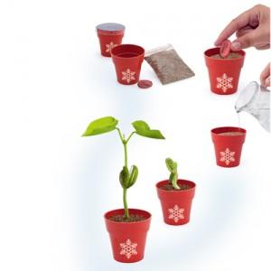 Pot-de-fleurs-biodégrable-personnalisé-Noël-6340