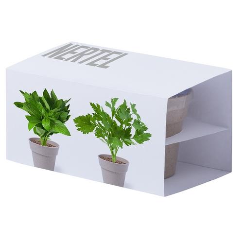 Pots de fleurs personnalisés avec graines